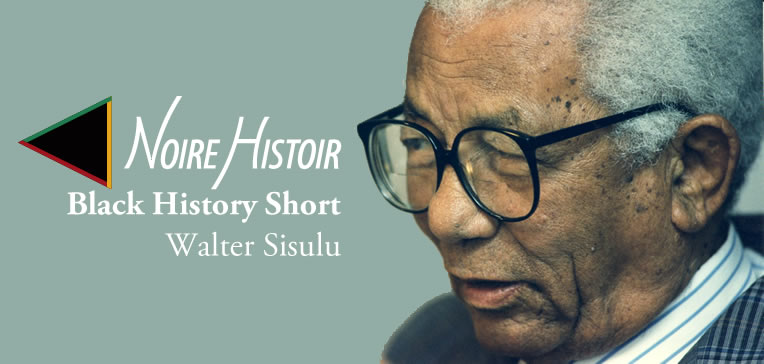 Color portrait in profile of Walter Sisulu against a light blue background.