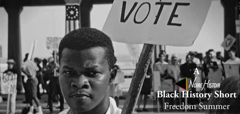 Freedom Summer participant carrying a 'Vote' picket sign.